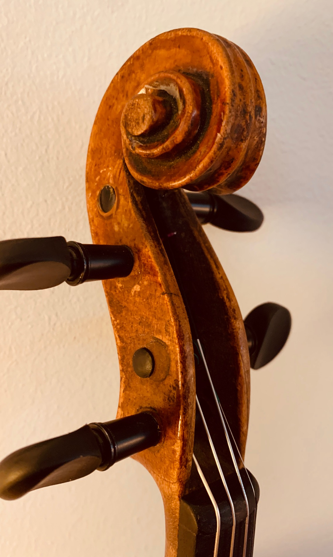 Czech Strad Scroll